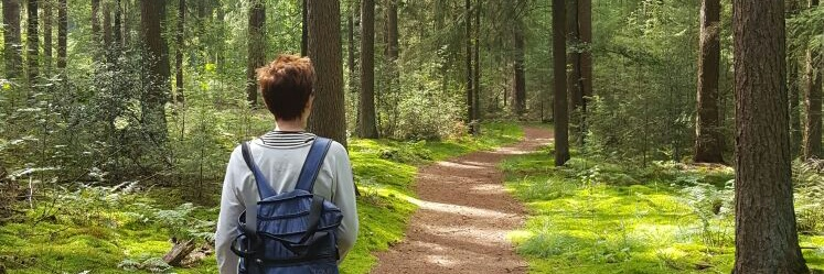 Natuurlijkwandelcoaching wandelen naar werkgeluk
